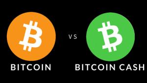 bitcoin-cash2